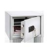 BURG-WÄCHTER Sicherheitsschrank Combi-Line 10 S A006267B