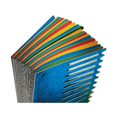 Leitz Ordnungsmappe Deskorganizer Color 24 Fächer