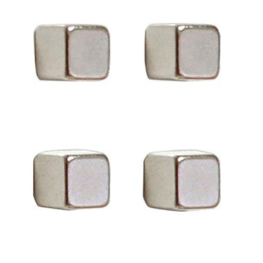Franken Magnet 10 x 10 x 10 mm (B x H x T)