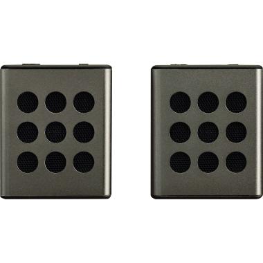 Lenco Lautsprecher BTP-200 mit Bluetooth Schnittstelle